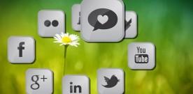 (ANSA) 25% OF ITALIAN SMALL-MEDIUM ENTERPISES IS ON SOCIAL NETWORKS